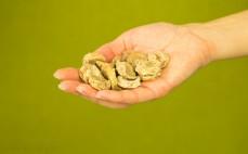 Garść suszonych bananów (puffins)
