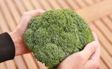 Jeden brokuł