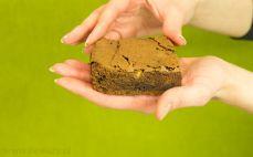 Kawałek brownie