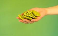 Garść pełnoziarnistych chipsów błonnikowych o smaku szpinaku