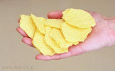 Garść chipsów pieczonych