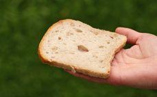 Kromka bezglutenowego chleba słonecznikowego