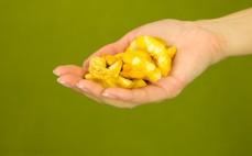 Garść suszonych chipsów z brzoskwini Crispy natural