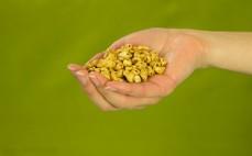 Garść chrupiącej pszenicy z melasą i migdałami