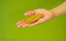 Ciasteczko jęczmienne z siemieniem lnianym
