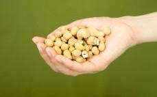 Garść mieszanki kukurydzy i nerkowca Cud Miód