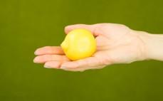 Cytryna marynowana