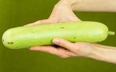 Długi melon bottle gourd