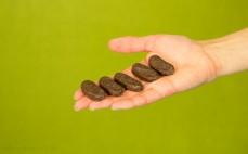 5 sztuk herbatników Fasolki z galaretką pomarańczową w czekoladzie