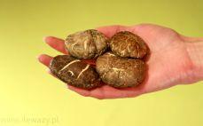 Garść suszonych grzybów shiitake