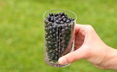 Szklanka jagód