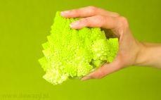Kalafior zielony romanesco