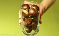 Szklanka kasztanów jadalnych