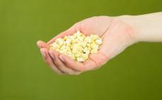 Garść liofilizowanej kukurydzy