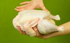 Tuszka z kurczaka