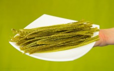 Porcja makaronu z zielonej soi