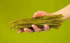 Makaron z zielonej soi