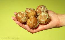 5 mini pączków