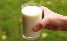 Szklanka mleka 1,5%
