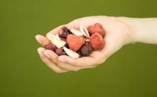 Garść owoców liofilizowanych MixChips