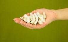 Garść plastrów kokosowych