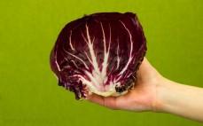 Liść sałaty radicchio