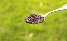 Łyżka ryżu dzikiego
