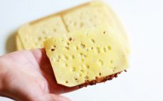 Plaster sera żółtego