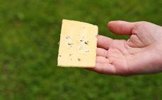 Plaster sera Skalmierzyckiego