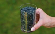 Szklanka czarnej soczewicy