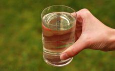 Szklanka soku z brzozy