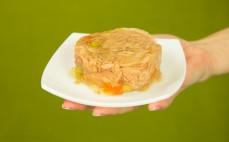 Porcja tuńczyka w galarecie