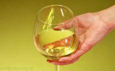 Porcja białego wytrawnego wina