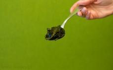 Łyżka alg morskich Wakame w solance