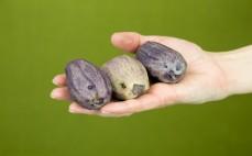 3 fioletowe ziemniaki