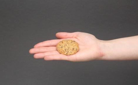 Ciastka bezglutenowe jaglane z dodatkiem siemienia lnianego