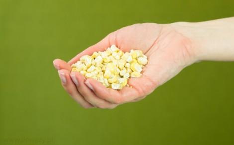 Kukurydza liofilizowana