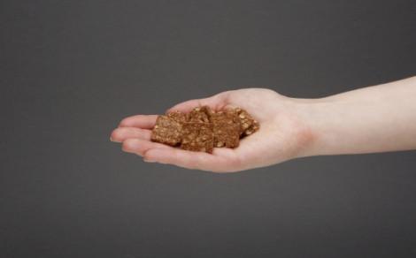 Kruche ciasteczka zbożowe kakaowe