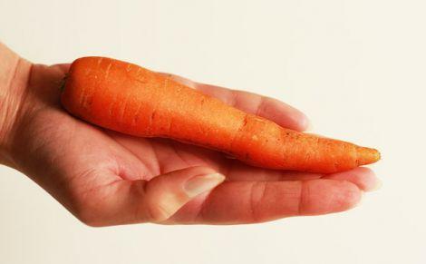 Średnia marchew