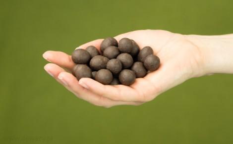 Orzechy laskowe w surowej czekoladzie