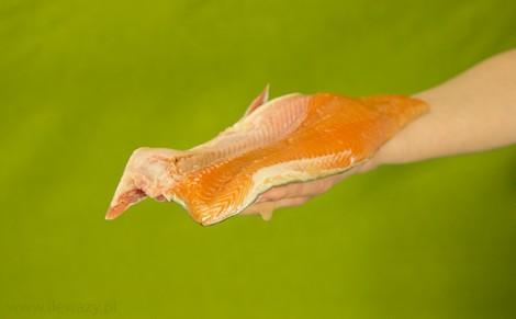 Palia hodowlana