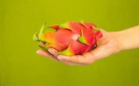 Pitaja - smoczy owoc