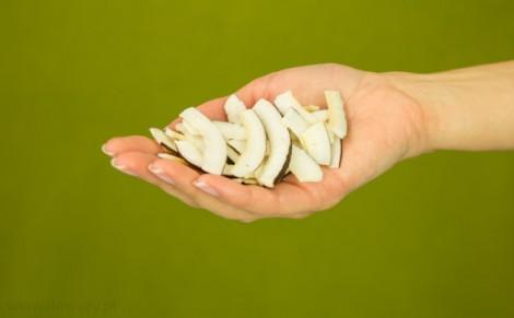 Plastry kokosowe