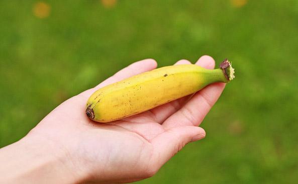 Mini banan