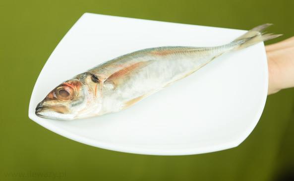 Ryba Ostrobok