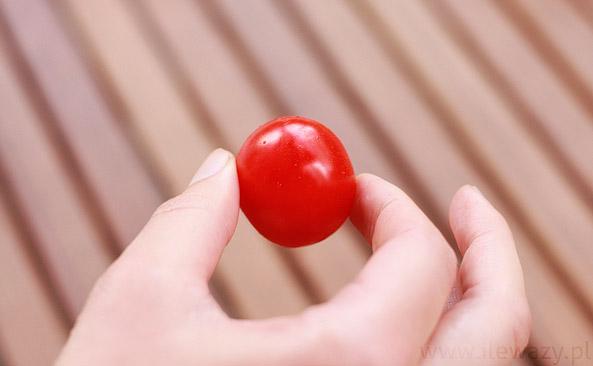 Pomidor koktajlowy