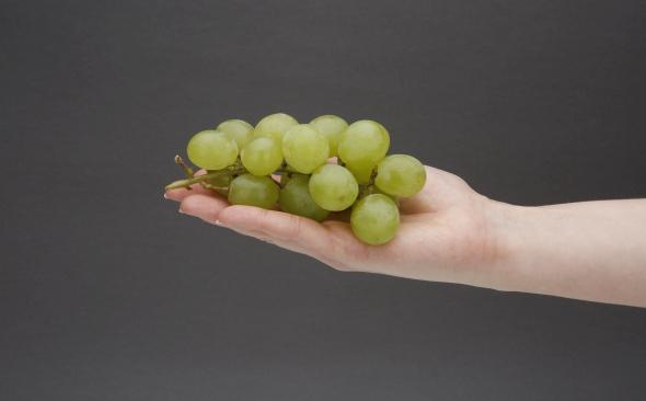 Winogrona rodzynkowe